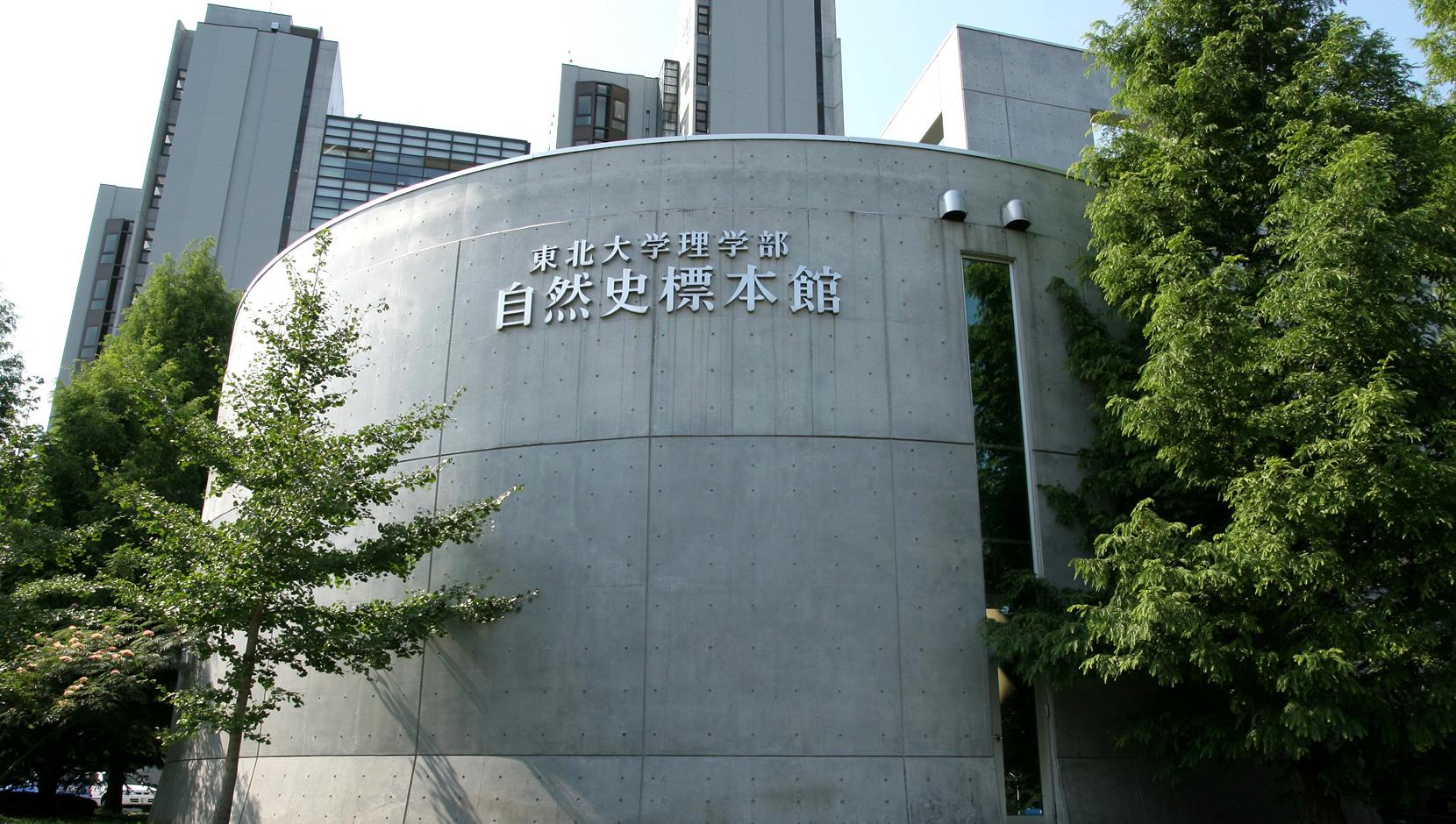 仙台Loople巴士东北大学博物馆站