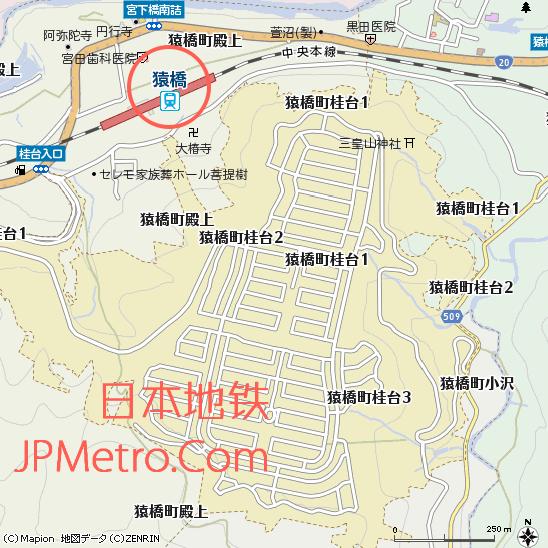 桂台街区图