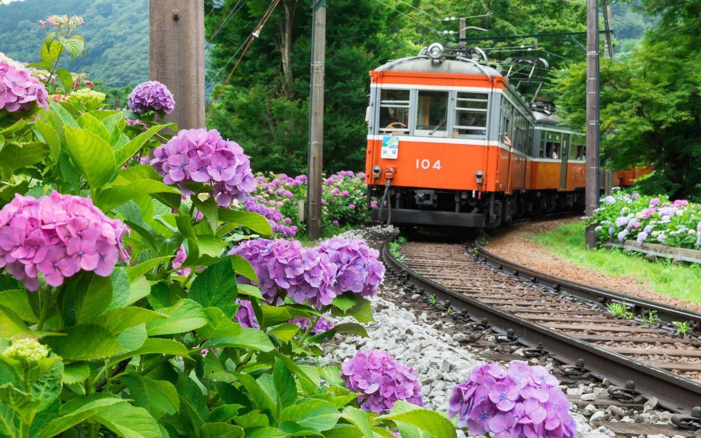 箱根登山铁道之夏