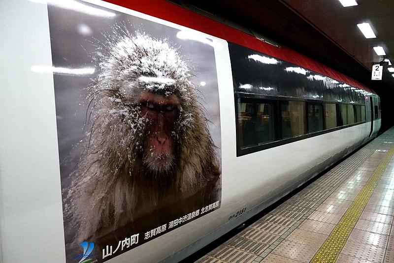 长野电铁2100系列车身上的猕猴宣传涂装