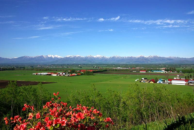 北海道十胜平原农场