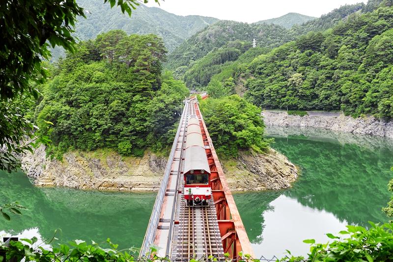 从隧道口上的观景小台俯瞰一列行进中的大井川铁道列车