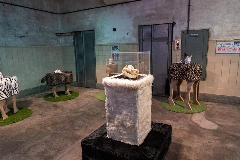 休息平台正中央展出的是在博物馆动物园站结束营业的同一年(1997年)去世的大熊猫欢欢(ホァンホァン)的头骨