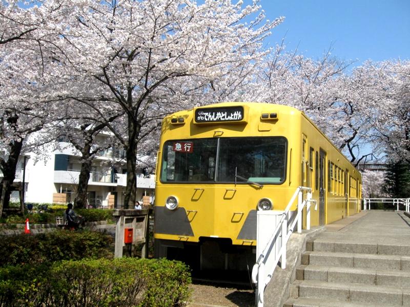 近距离看久米川电车图书馆