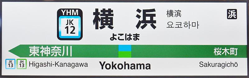 JR东日本两线共线站名标