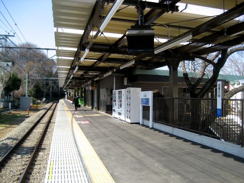 从西南侧看武藏大和站站台全景