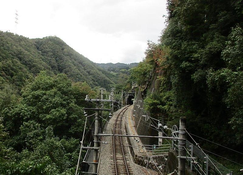 从丰桥方向的隧道口顶部俯瞰整个田本站